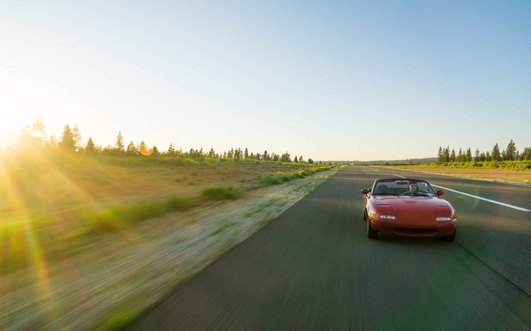 A Wheely Good Summer: Our Car Activity Guide