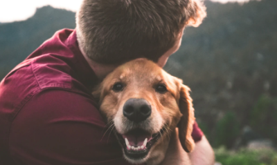 8 Ways Pets and Mental Health Go Together