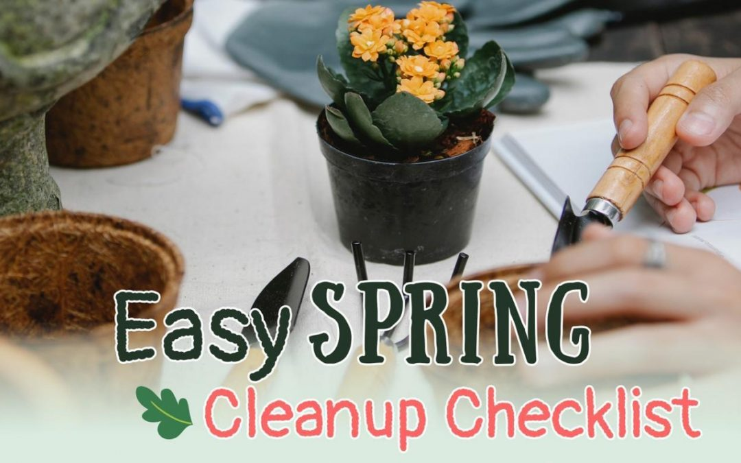 Spring Cleanup Checklist for your Garden or Yard