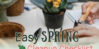Potting flowers with spring cleanup text over image