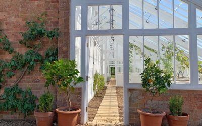 Ideas to upgrade your Conservatory or Summer House